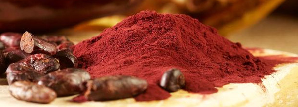 Cocoa-Flavanol-Extract