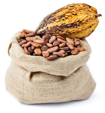 Cocoa-Flavanols
